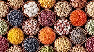 栄養満点な豆は種類も豊富!~豆の特徴を知って使い分けを楽しもう~ | VEGAN子育て